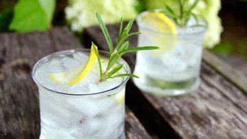Gin tonic au romarin