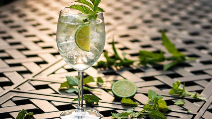 Gin tonic Hugo